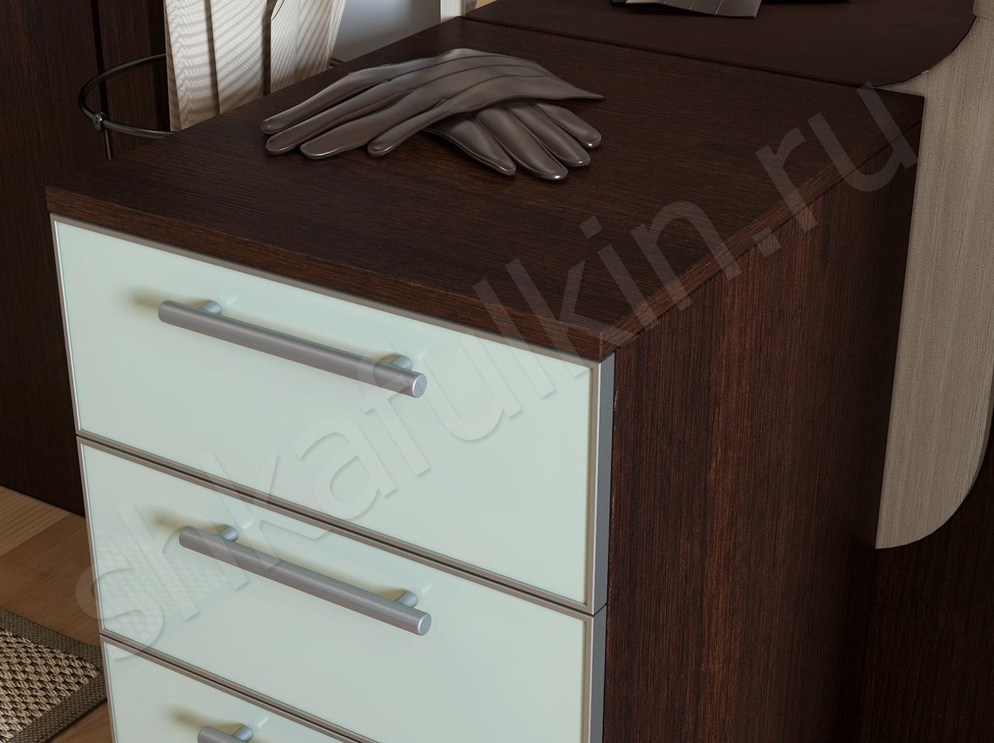 Дизайн шкафа в прихожую цвет венге 3
